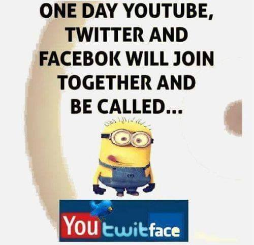 you twit face