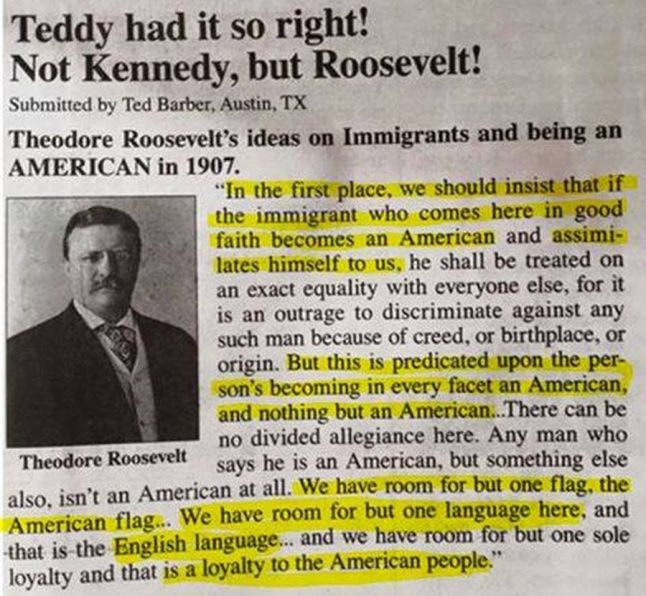 teddy-roosevelt-quote-about-immigrants-to-america